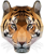 Tiger Byte Studios